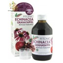 (Speed Recovery) Naturvital Florian Echinacea Pomegranate Restore 250ml