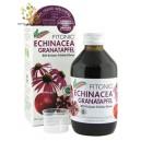 (Speed Recovery) Naturvital Florian Echinacea Pomegranate Restore 250ml